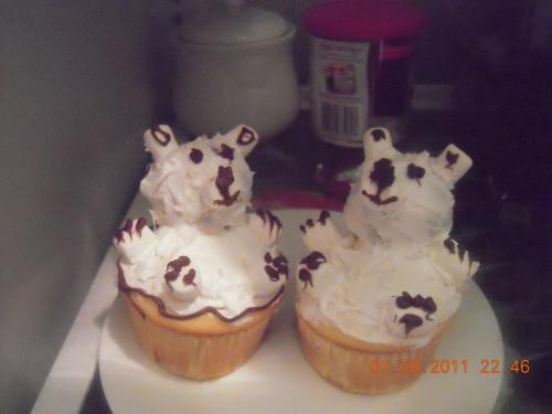 My Cupcakes!!
